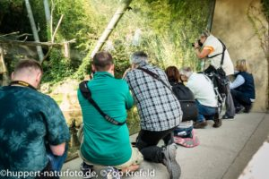 Workshop Zoo Krefeld Sept. 18